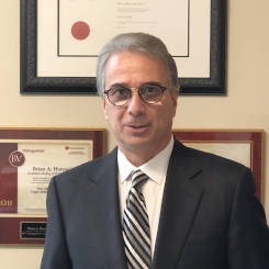 Experienced-Toronto-Personal-Injury-Lawyer-Brian-Horowitz-245px